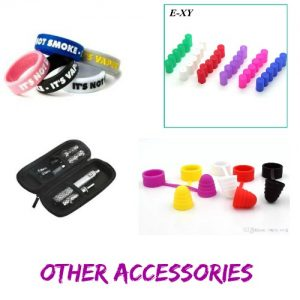 Other Accessory ( case, band, ect.)